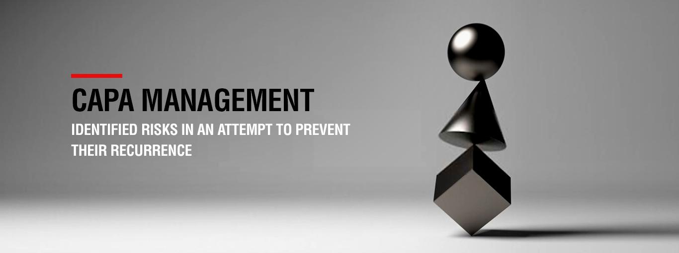 IT audit management copy