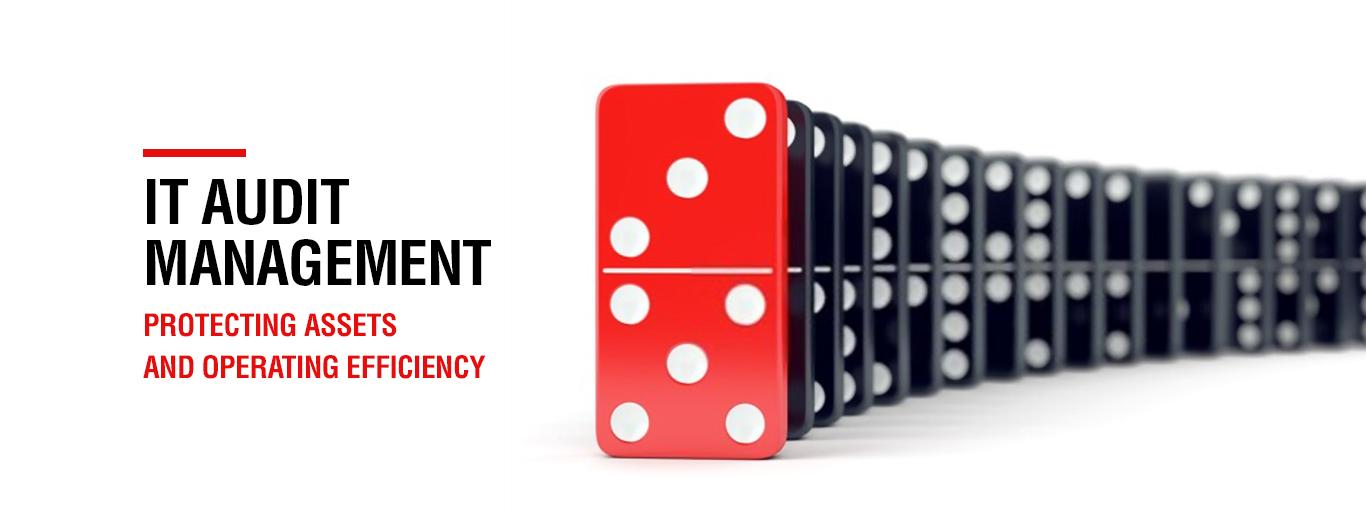IT audit management