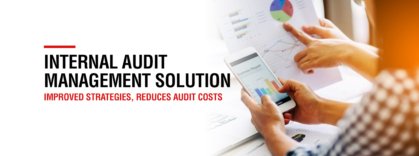 internal audit management solution
